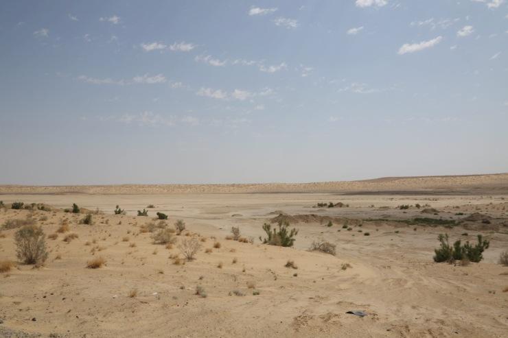 Wüste in Turkmenistan